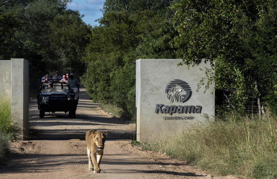 Resultado de imagem para kapama reserve