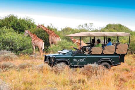 African Holidays 2019/2020 | African Safari Holidays | Virgin Holidays