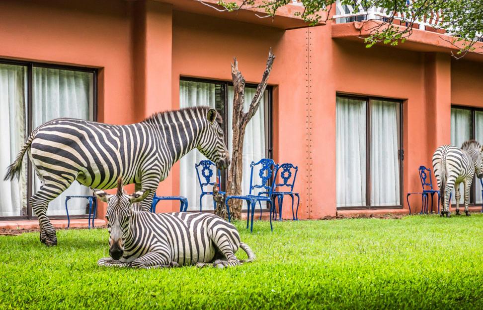AVANI Victoria Falls   Victoria Falls, Zambia Hotel   Virgin Holidays